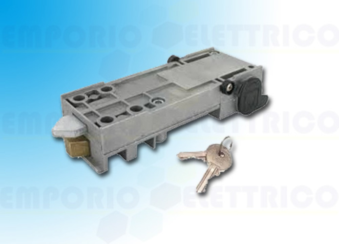 came customized key release and euro-din cylinder 001a4366 a4366